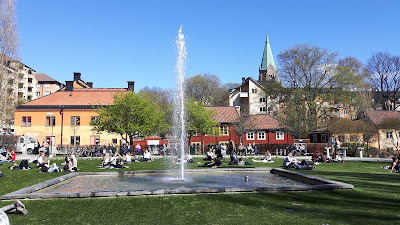 Nytorget 101