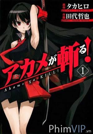 Thành Phố Diệt Quái Vật - Akame Ga Kill poster