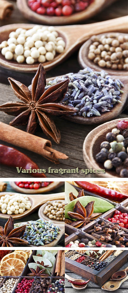 Stock Photo: Various fragrant spices