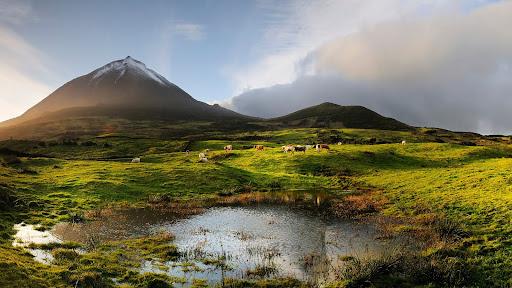 Volcano, Pico Island, Azores, Portugal.jpg