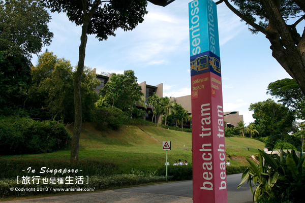 【走走新加坡】聖淘沙 陽光沙灘水舞秀