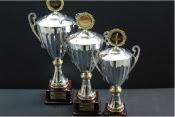 Absi Cups