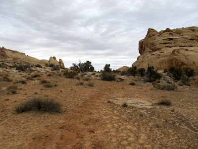 Trail between the first two canyons--the tracks are indistinct, but I think they're from cattle