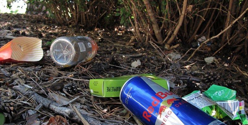 Litter, under a bush
