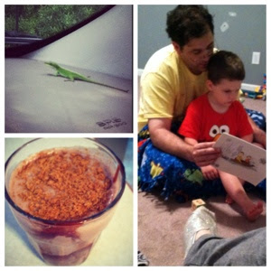 coconut milkshake, lizard in the car, reading to daddy