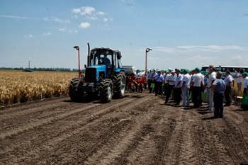 Дни поля-2013: осмотр посевов КНИИСХ им. Лукьяненко и опытных полей КубГАУ