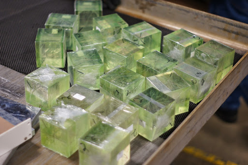 Irriadiated and discharged cubes