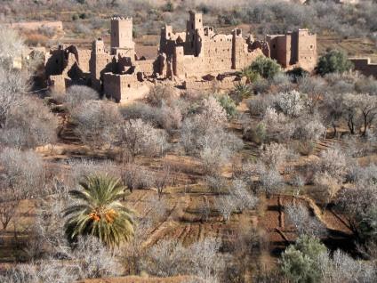 Kasbah im Oued Mgoun bei El-Kelaa