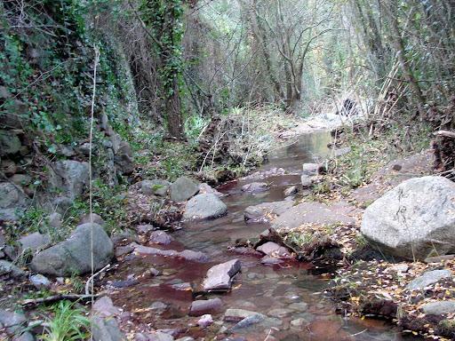 Senderismo en los barrancos de Aguas Negras y Malo