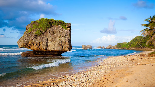Bathsheba Beach, Barbados.jpg