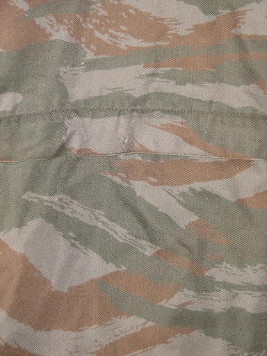 lizard pattern Img1749