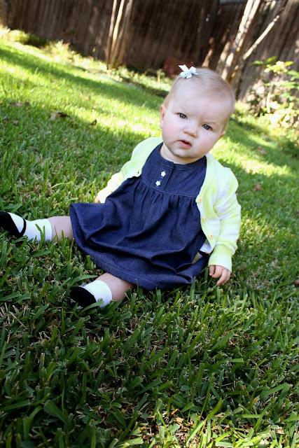denim olivia dress