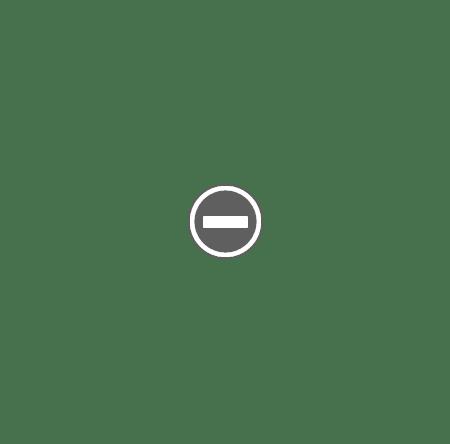 Bullrich Salz Bullrich Salz