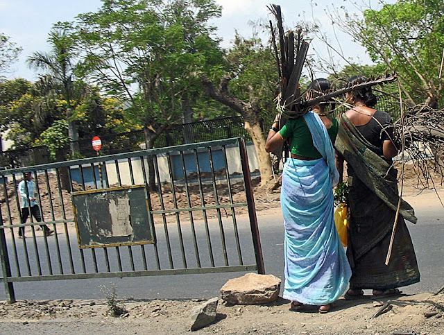 women carrying firewood in city