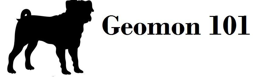 Geomon101