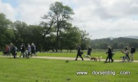 Sponsored dog walks in Dorset - with dorsetdog.com