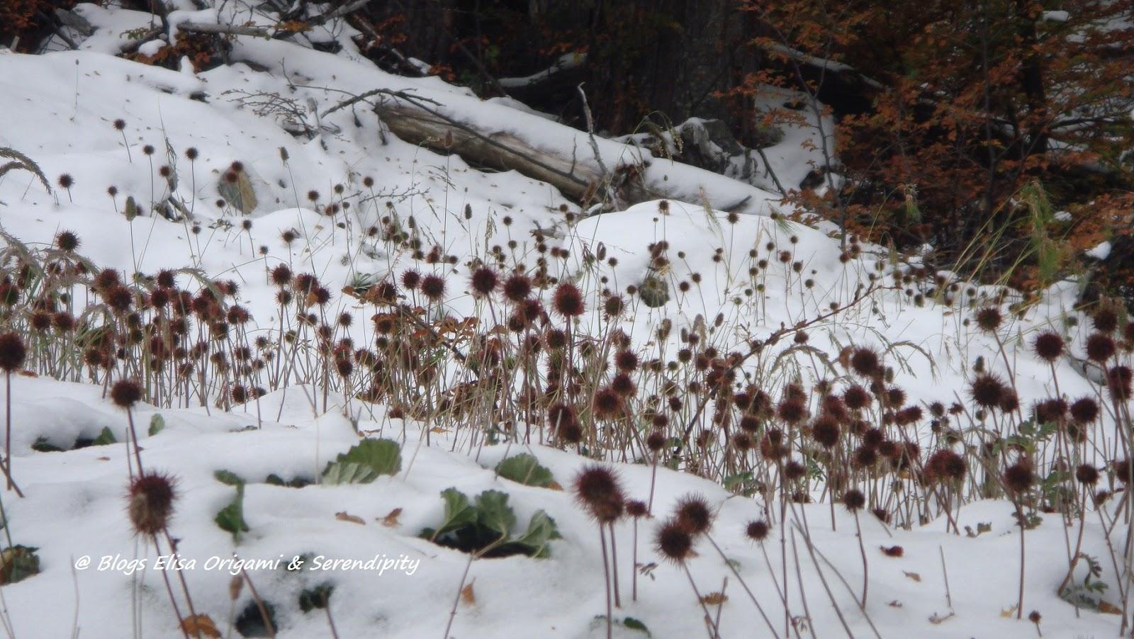 Glaciar Martial, Ushuaia, Patagonia, Argentina, Elisa N, Blog de Viajes, Lifestyle, Travel