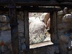 Miner's Shack - Myer Valley