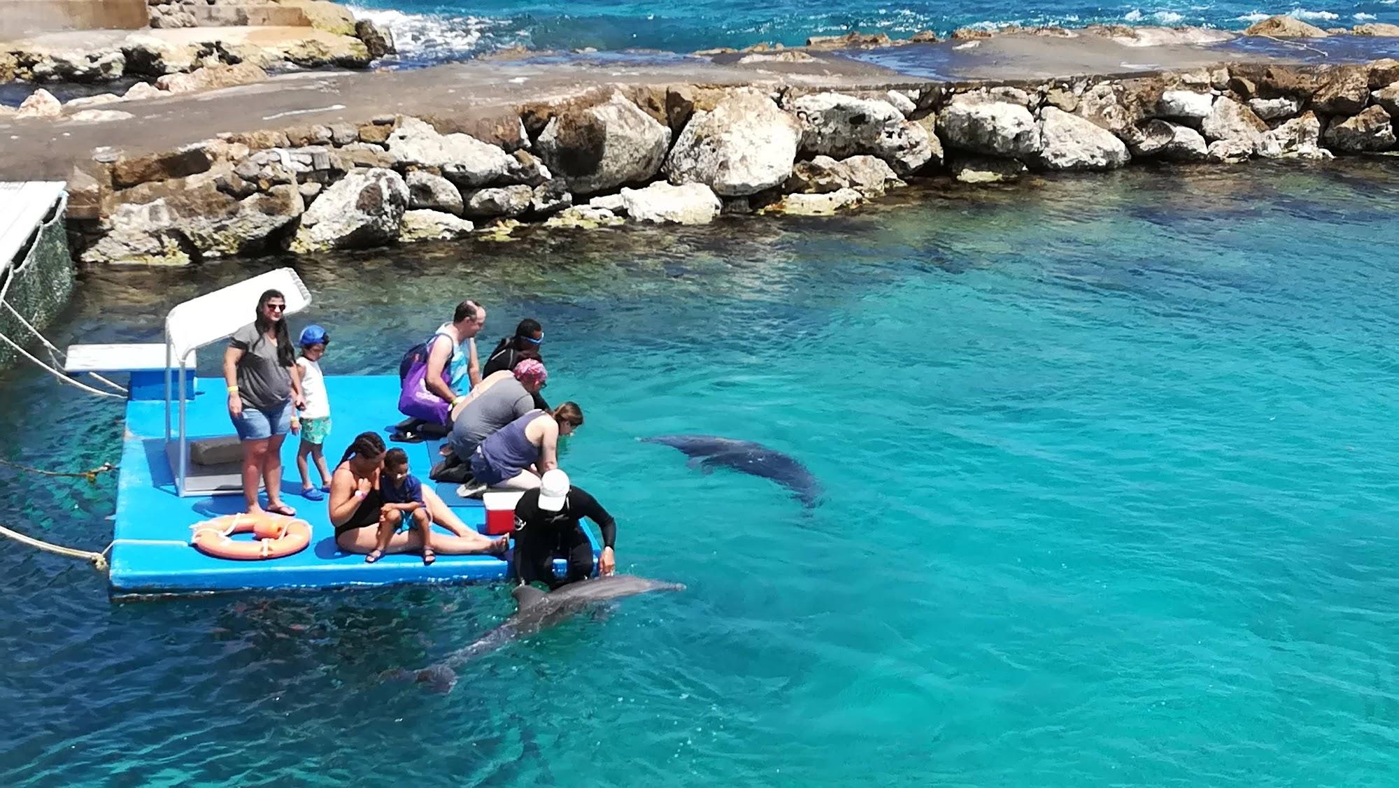 Reisinformatie Curaçao