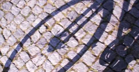 Kopfsteinpflaster auf der alten Fernstraße zwischen Stralsund und Greifswald, Mecklenburg-Vorpommern