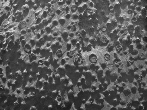 機遇號使用其搭載的顯微成像儀設備拍攝了這張照片,時間是2012年9月6日。 圖像覆蓋約6x6厘米的視野範圍,地點是在奮進號隕石坑西側邊緣的柯克伍德岩石露頭,可以看到大量密集分佈的小球體,目前其成因和意義尚不明確