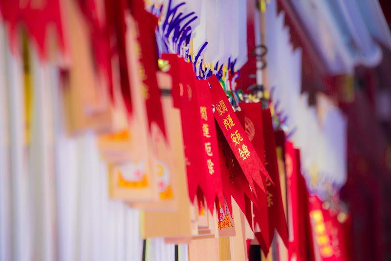 箱根神社 写真10
