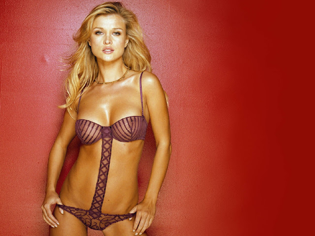 Hot American Model:Joanna Krupa 1600x1200 Wallpaper