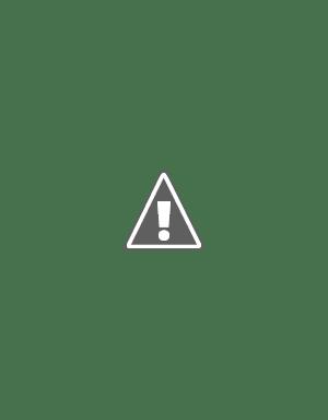 Plantilla de página de periódico o revista, formato InDesign, con muchas fotos y declaraciones breves