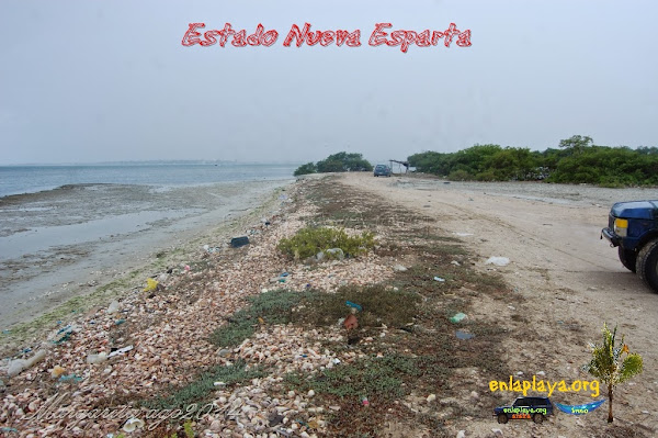 Playa Cacachacare NE119, Estado Nueva Esparta, Tubores