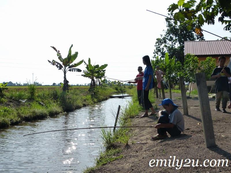 Sungai Sireh Homestay