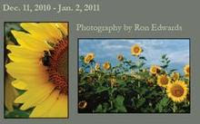 The Photography of Ron Edwards