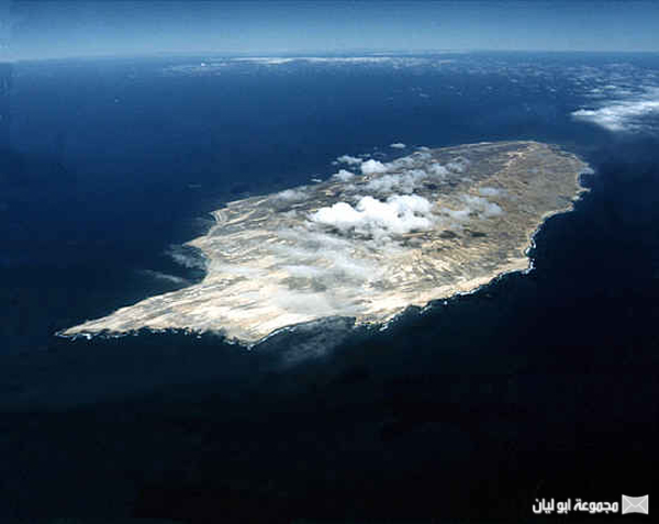 اغرب 10 : جزر في العالم Dolphen-Island