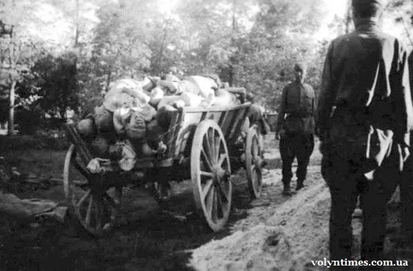 """На таких """"драбиняках"""" возили мертвих солдат на Гнідавську гірку."""