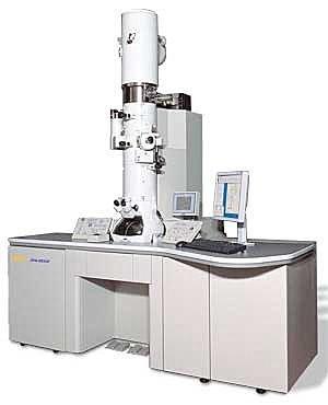 mikroskop elektron