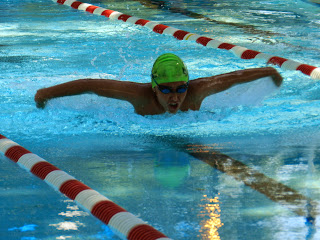 DG swimming fly 20140705
