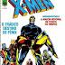 HQs: Grandes Heróis Marvel 7