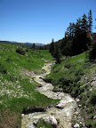 North Fork of Muddy Creek tributary
