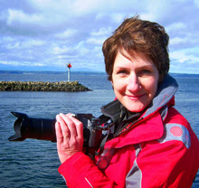 Jan Edney- sailing/ yachting photographer- Seattle, WA