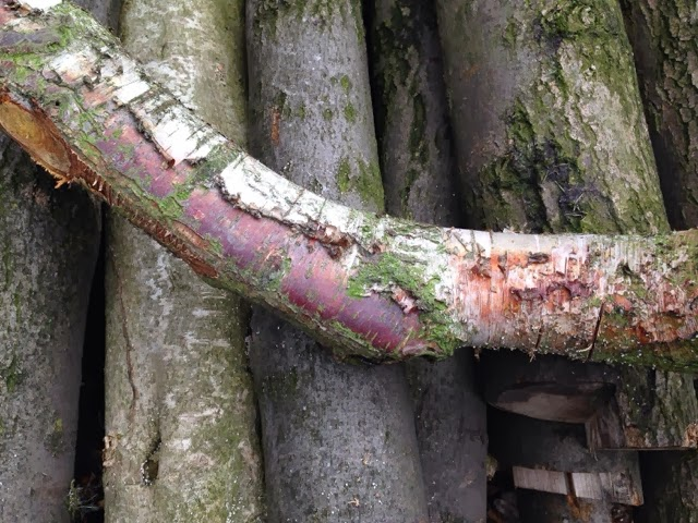 branch wood carving simon hill wound section bottom