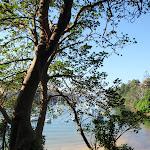 Pretty water scenes (258215)
