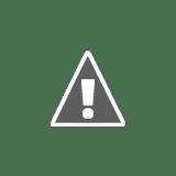 RTTS 2003