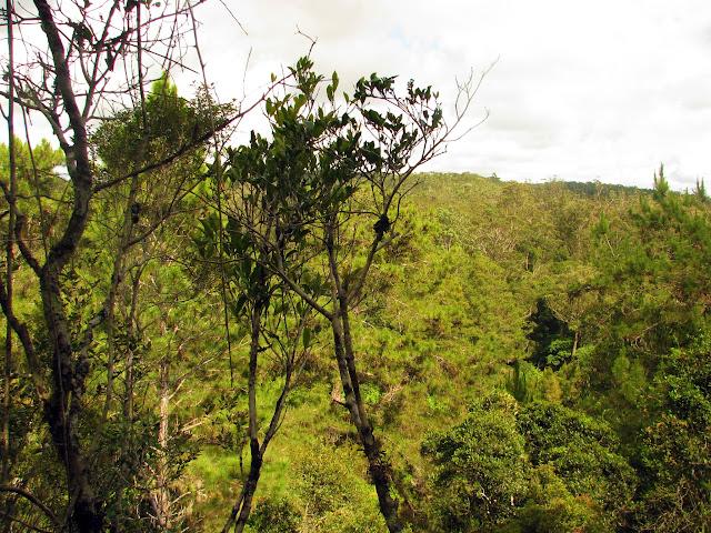 صور من مدغشقر Madagascar 14686203265