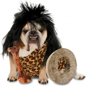 Crazy Cute Dog with Primitive Costume