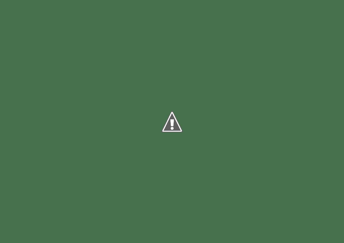 calendario 2014-2015 Feb15