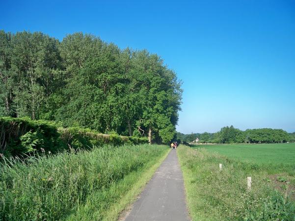 Nuit de Betuwe (NL); 110km ou 80km: 8-9/06/2012 100_6923