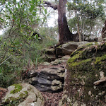 Rocks at the lower end of the Midway Trail (205408)