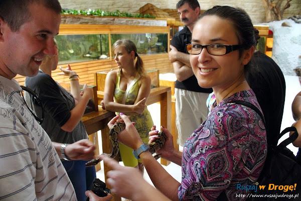 Tuchlino Park Egzotycznych Zwierzaków - dotknij węża