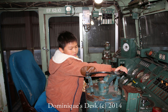 Monkey boy trying to work the levers