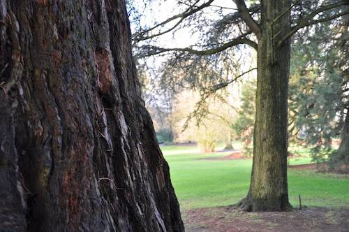 Park Oosterbeek