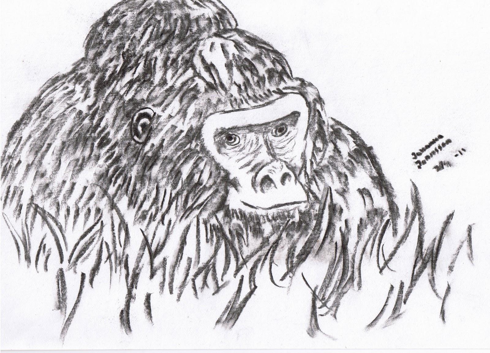 min klasskompis är en apa
